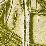 Papyrus_2